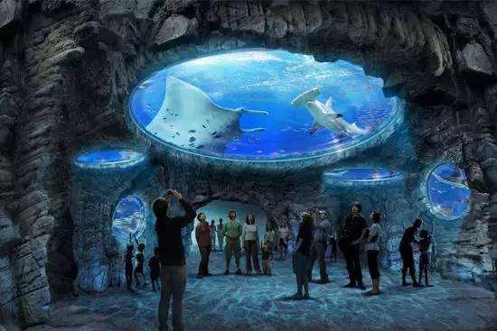 畅游上海海洋馆